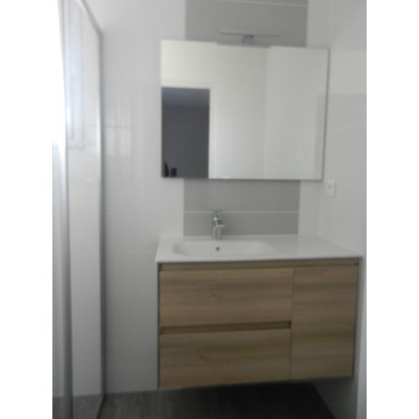 Rénovation d'une salle d'eau à Vertou (44120)
