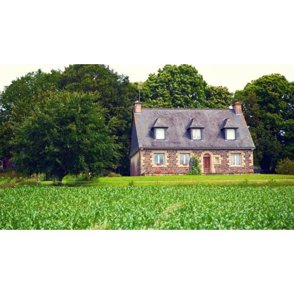 Exode vers les maisons avec terrain